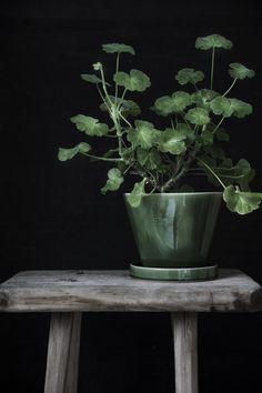 ERNST KIRCHSTEIGER designer (Sweden) | Spring 2018 | via trendspanarna