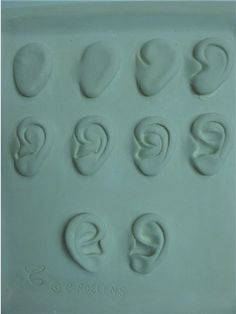 sculpting ears
