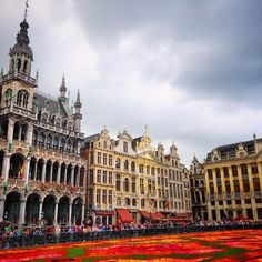 "Brussels' ""flower carpet"" brightens up Grand Place in the early fall. Foodies will enjoy the vibrant colors alongside the area's best restaurants. Photo courtesy of kashrom on Instagram."