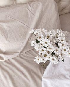 Cream Aesthetic, Classy Aesthetic, Flower Aesthetic, Aesthetic Photo, Aesthetic Pictures, Aesthetic Backgrounds, Aesthetic Wallpapers, Pretty Flowers, Buy Flowers