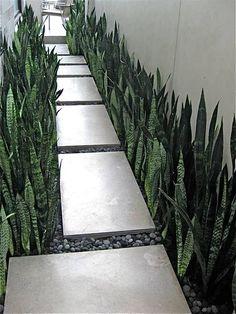 Side Yard Landscaping, Modern Landscaping, Backyard Patio, Landscaping Ideas, Walkway Ideas, Patio Ideas, Pavers Ideas, Patio Wall, Side Walkway