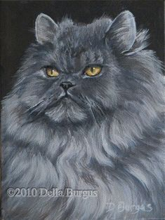 One of the most popular is the Persian Cat, an absolutely unique and beautiful animal.
