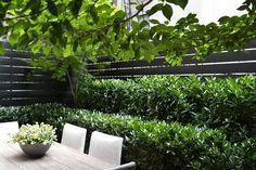 East VillageGarden New York City, NY  HARRISON GREEN Landscape Design |Construction | Maintenance  studio@harrisongreen.com