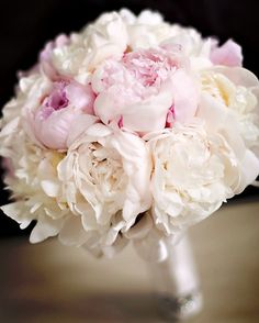 powder blush white