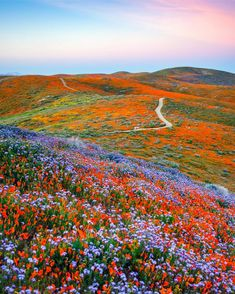 Most Beautiful Places In California You Need To See On Your Next Road Trip