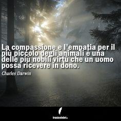 Su FrasiCelebri.it trovi le #citazioni più belle e più famose! Vai su http://www.frasicelebri.it/