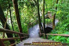 Khao Yai Tour, Khao Yai National Park One Day Tour Daily Tour from Bangkok