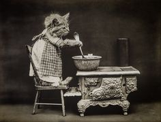 The Cook, with Cats, photographed by Harry Whittier Frees, June 24, 1914…