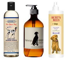 Our 6 Favorite Dog Grooming Products #InStyle