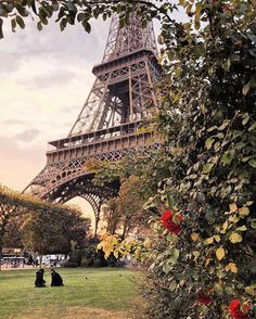 🌷 Tour Eiffel, notre amour 🗼~ Paris, France  Photo: @katie.one Congrats! 👏 😍 TAG someone you love 💖  #living_europe #paris #europe #topparisphoto #visitparis #parismaville #igersparis #loves_paris  #paris_maville #paris_jetaime #paris_focus_on #toureiffel #france #ig_france #ig_paris #europe #cityview #loves_landscape #ig_europe #europa #super_europe #travelphotography #traveladdict #loves_europe #postcardsfromtheworld #europe_gallery #europe_vacations #europe_tourist #places_wow…