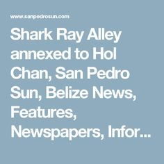 Shark Ray Alley annexed to Hol Chan, San Pedro Sun, Belize News, Features, Newspapers, Information, Resource, Caribbean, Ambergris Caye