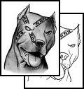 Rebel Flag Skull Tattoos | ... Tattoos, animals Tattoos, confederate Tattoos, flag Tattoos, rebel