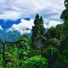 Awesome scenic beauty of Sikkim #travel_india #India #wanderlust #scenic #pin ##sikkim #placestovisit #travelphotography #traveling