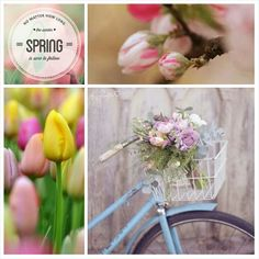 No matter how long the winter, spring is sure to follow. #Moodboards #Mosaic #Collage by Jeetje♡