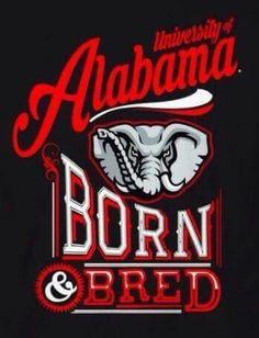 Alabama Tide, Alabama Logo, Alabama Crimson Tide Logo, Crimson Tide Football, Alabama Football, College Football, Alabama Wallpaper, Football Quilt, Sweet Home Alabama