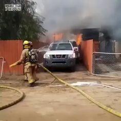 Guy saved his dog.