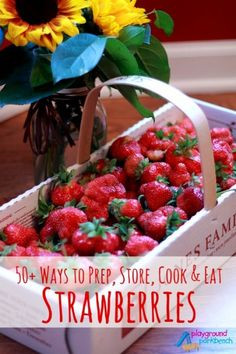 Summer is the peak of strawberry season - whether you find them for cheap in bulk at the grocery store or find a local farm to pick your own - See 50+ ways to prep, play, store, cook, eat and drink summer's favorite fruit - strawberries!