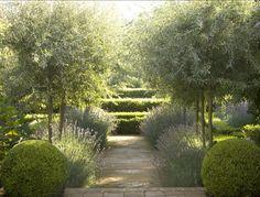 peter-fudge-lavender-garden-australia-gardenista
