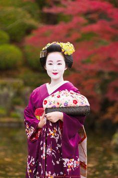 maiko - kyouka