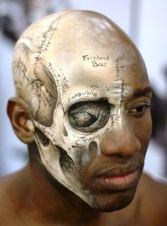 Lisa Merczel created this medical illustration of the human skull
