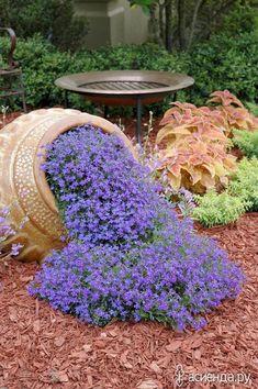 ЦВЕТОЧНЫЕ КЛУМБЫ В ВИДЕ РУЧЬЕВ: Группа Клумбы и цветники