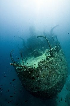 Wreck of the Victory in the Maldives. Possibly the most popular for wreck diving in the Maldives. It is 110m in length. see  turtles, large groupers and tuna. Classified as an advanced dive.