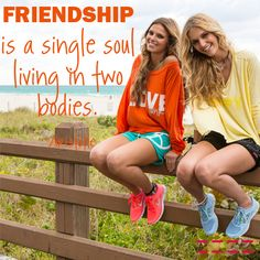 Best Friends Quote. Friendship Quote. Friendship is a single soul living in two bodies.