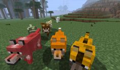 minecraft mods | Mod Mob : More Wolves Mod - Minecraft Aventure