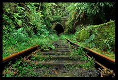 Beautiful abandoned railroad track and tunnel.