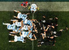Rugby Sport, Rugby Men, Pumas, Australian Football, All Blacks, Boyfriend Material, Lions, Soccer, Tattos