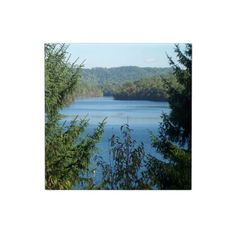 Lake and Trees Tile!  This tile represents an entire like of products!  Please check out my store!  http://www.zazzle.com/dww25921*