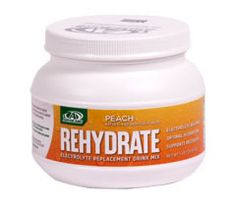 Rehydrate is now on the sidelines of all Major League Soccer teams - their official sports drink!  Rehydrate Electrolyte Replacement Drink (Mix) provides the necessary nutrients to maintain proper metabolism and delay the onset of fatigue. It hydrates your body by re-establishing your electrolyte balance with its superior formulation. Rehydrate Drink has a low glycemic index that produces a more gradual insulin response.