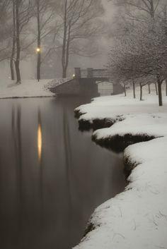 isis0isis:  Path Lights II by tedander