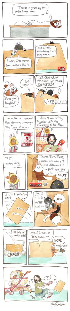 Today on Breaking Cat News - Comics by Georgia Dunn Morning Humor, Sunday Morning, Cat Comics, Funny Happy, Political Cartoons, Comic Strips, Georgia, Funny Pictures, Living Room