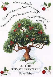 Tree Magick - Strawberry Tree?