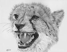 Tiger Sketch, Pet Birds, Lion, Deviantart, Animals, Leo, Animales, Animaux, Lions