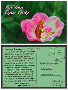 An inspirational message from Mother Nature For Your Eyes Only, Inspirational Message, Mother Nature, The Neighbourhood, Messages, Cards, The Neighborhood, Maps