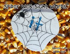 Charlotte's Web Sensory Bin: put sight words in the webs! (Halloween = perfect time to get spiders & rats for bin)