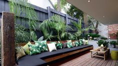 Painted fence makes green plants brighter. Love the seating and cushions