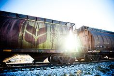 11x14 Luster Print  Resting Train by AveyChristiansen on Etsy, $32.00