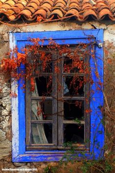 windows.quenalbertini: Old country house window - La Palma