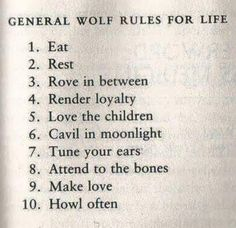 Nvda Quote Best Wolf Rules ✌  Wahya & Nvda  Pinterest  Wolf
