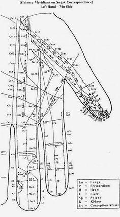 Disease to Ease: Byol Meridian - Left hand yin side