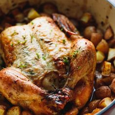 Whole roasted chicken with potatoes with golden skin in a baking dish Dutch Oven Whole Chicken, Baked Whole Chicken Recipes, Oven Roasted Whole Chicken, Baked Bacon Wrapped Chicken, Roasted Chicken And Potatoes, Baked Chicken Nuggets, Oven Chicken, Roast Chicken, Rib Roast Recipe