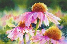 Everyday Graces Coneflowers de  Susan Crouch J'aime le traitement de la lumière qu'en fait cette artiste.
