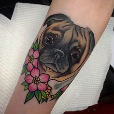 Tattooed cute little puggle Oliver, and his beloved bone today! Thank you…