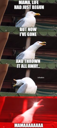 Meme_otros - A todos nos pasa con esa canción