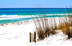 Who has been to destin Florida guys if so how is it