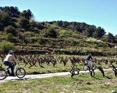Disfruta de una Ruta por el Penedés en bici automática. Una experiencia diferente en bicicleta recorriendo los viñedos y degustando vino de la zona! Entra en yuniqtrip y entérate de todo! #visitspain #visitaturistica #tour #turismointerno #vacaciones #veranito #verano2016 #veranito #bicicleta #barcelona #mediterranean #mediterraneo #turismo #ocio #comparte #regala #disfruta #regalazo #gastronomia #cultura #quehacer #finde #experienciasunicas #experiencias #inspain #conamigos #confamilia
