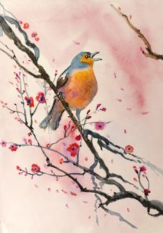 Bird Watercolour Painting from $34.99 | www.wallartprints.com.au #WatercolourPainting